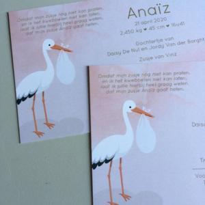 Geboortekaartje Anaïz